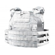 Plate Carrier Облегченный (MULTICAM ALPINE)